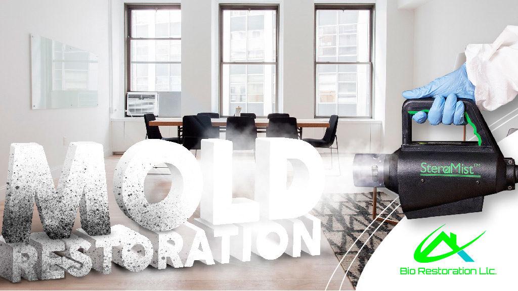 Bio Restoration LLC Mold Remediation
