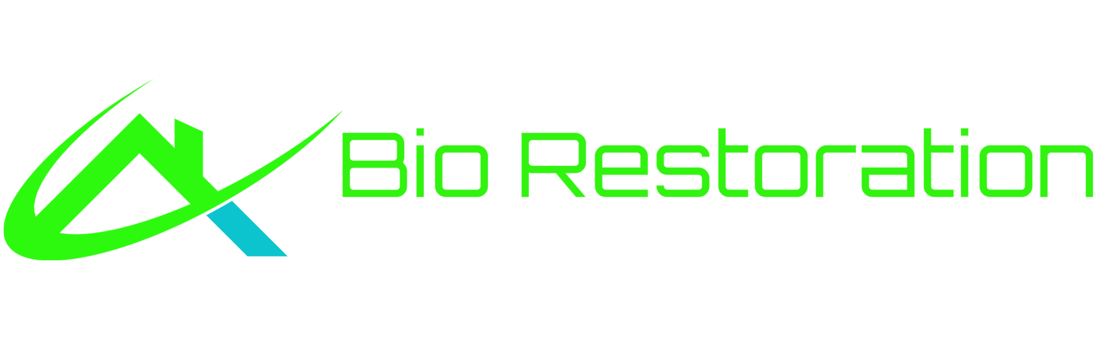 Bio Restoration Logo Full Name